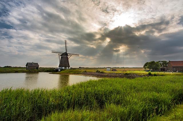 כפרי נופש בהולנד למשפחות